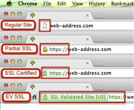 Levels of SSL protection