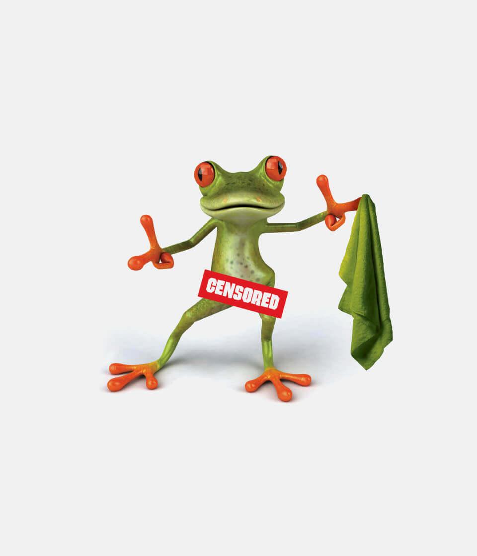 British Gipsum cheeky censored frog advert