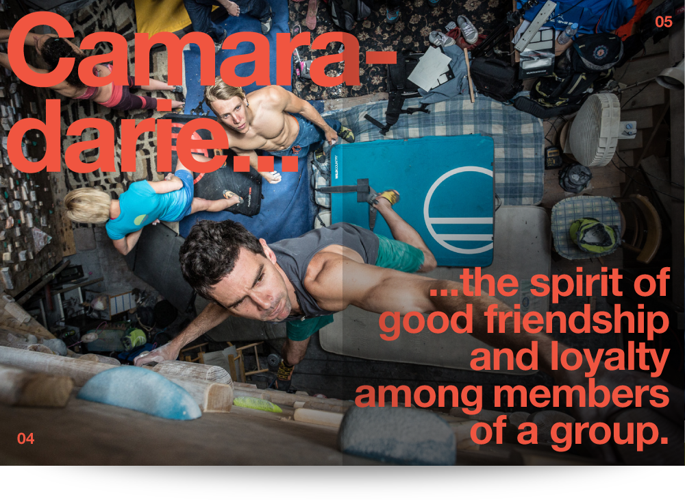 Camaraderie... the spirit of good friendship and loyalty among members of a group.